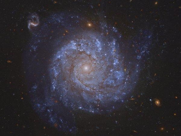 ( NGC 1309 ) La galaxie spirale  et ses amies .