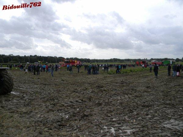 PotatoEurope 2011