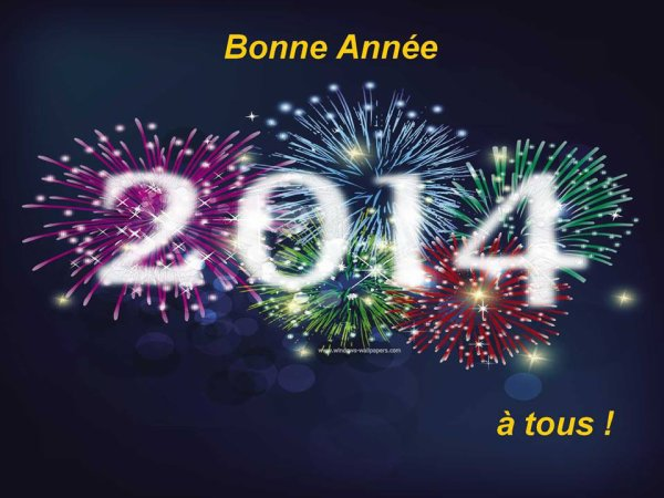 bonne et heureuse année à tous , que joie , bonheur , amour et argent soit présent dans cette nouvelle année 2014