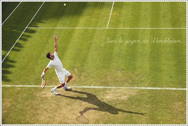 -║ Wimbledon ıı