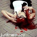 Photo de junk-monkey