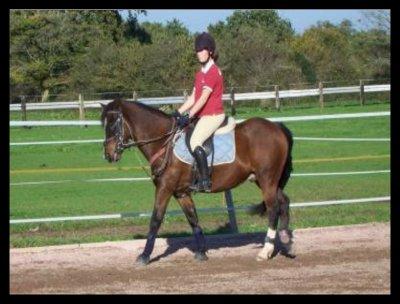 """"""" Votre cheval vous ressemble comme votre reflet dans un miroir."""" ♥"""