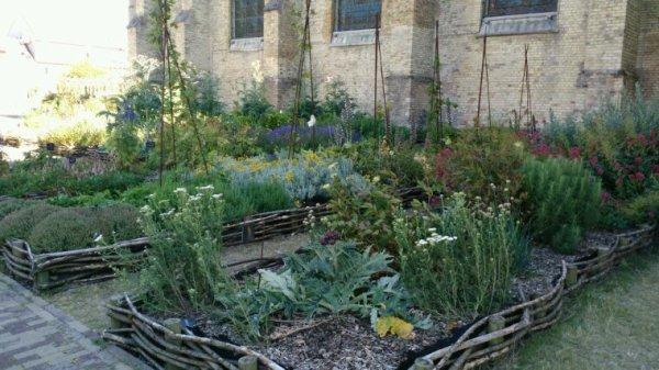 Jardin église notre dame Calais