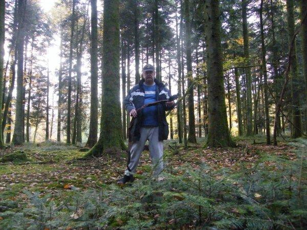 La Forêt des Andaines. (suite 2)