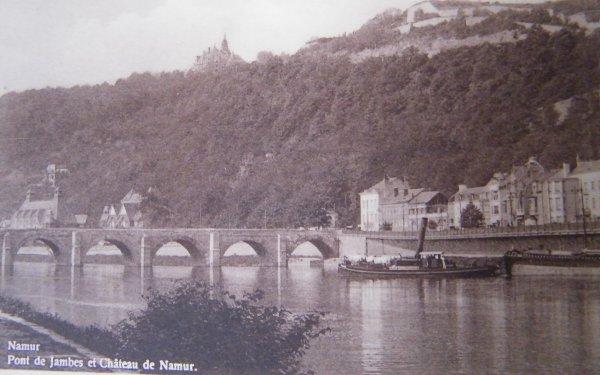 Namur - Le pont de Jambes et le chateau de Namur