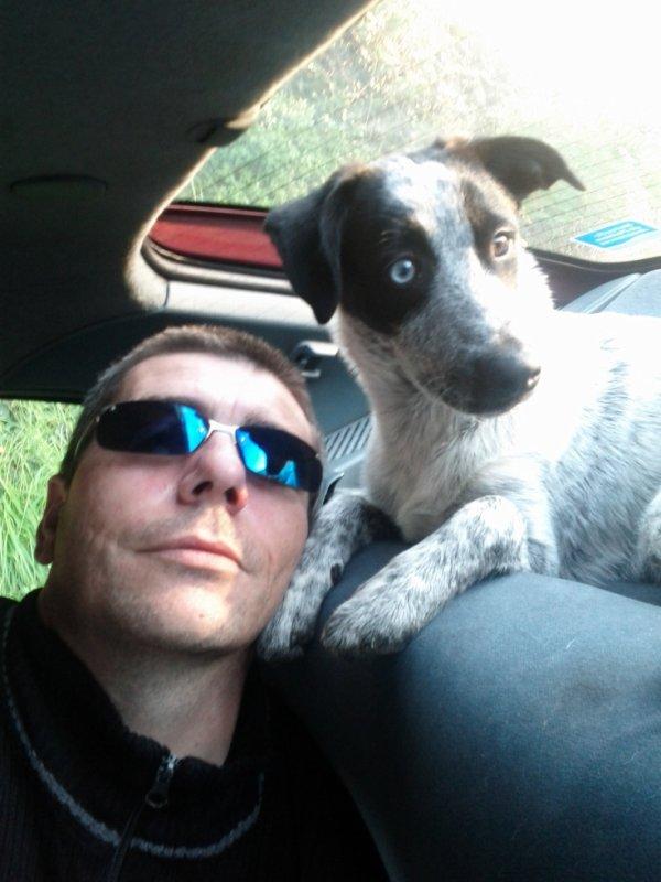 NIKITA notre chienne et moi meme SAMMY