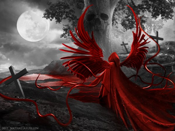 Belle rose interposée, dans ta démarche cadencée, je vois la mort s'y chalouper