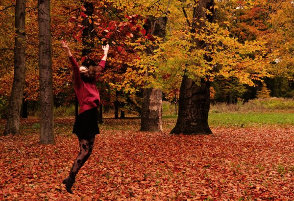 Oh! l'automne! L'automne a fait mourir l'été.