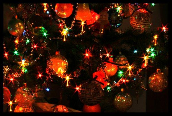 « A Noël, amusons-nous, profitons-en, Car Noël ce n'est qu'une fois par an. »