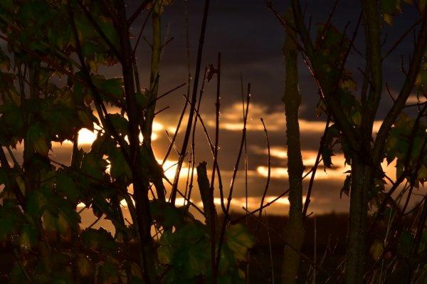 Balade, balade. couché de soleil sur la campagne de Montargis.
