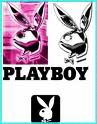 qui aime plyboy