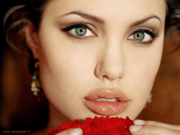 Rubrique actrice : Angelina jolie