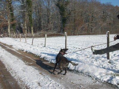 darek hiver 2010