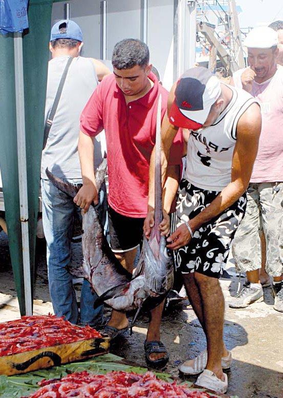 Pêcheurs Algériens