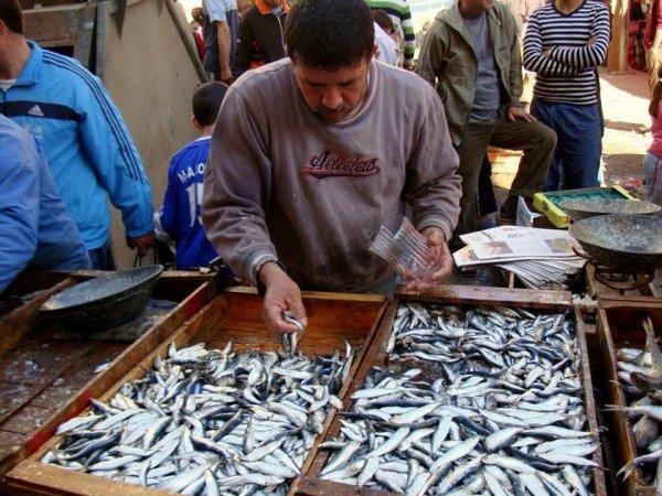 Vendeur de sardines