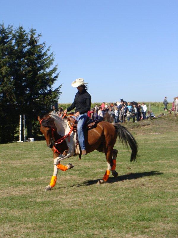 Fête du cheval à Malmont