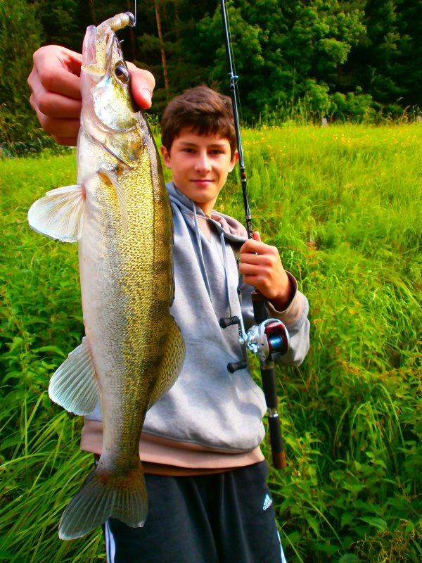 ztreet zander fishing