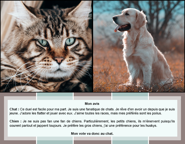Duel #7 : Animaux  Chat VS Chien