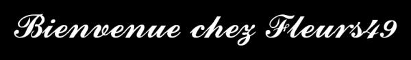 BIENVENUE CHEZ FLEURS49