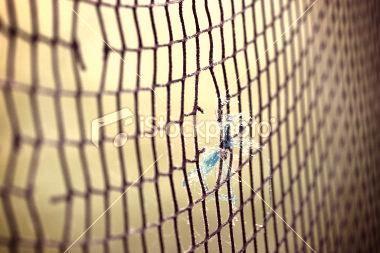 Le Tennis ♥♥