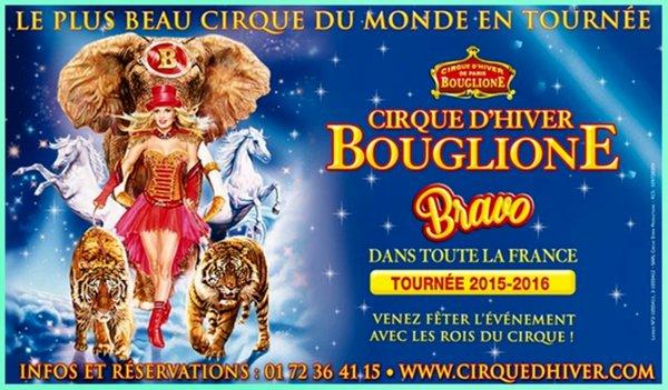 G3636 - CIRQUE D'HIVER BOUGLIONE A TOURS.