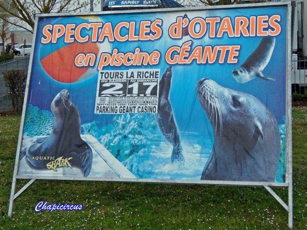 G3687 - AQUATIC SHARK A TOURS-LA RICHE.