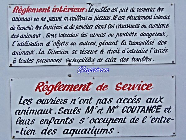 G3690 - AQUATIC SHARK A TOURS-LA RICHE.
