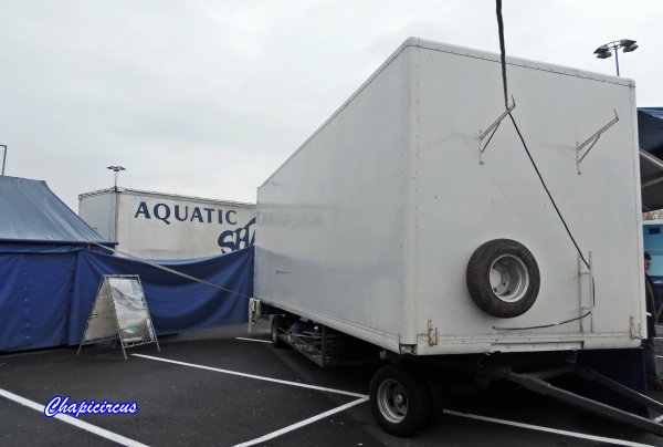 G3692 - AQUATIC SHARK A TOURS-LA RICHE.