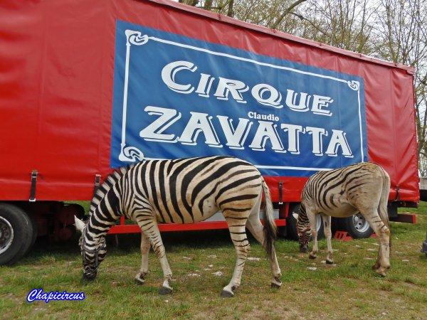 G3712 - CIRQUE CLAUDIO ZAVATTA.
