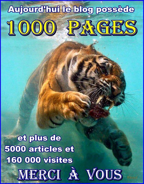 G3937 - 1000 pages ..... enfin presque !