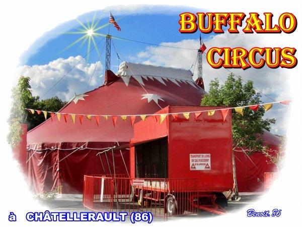 G3952 - BUFFALO CIRCUS.