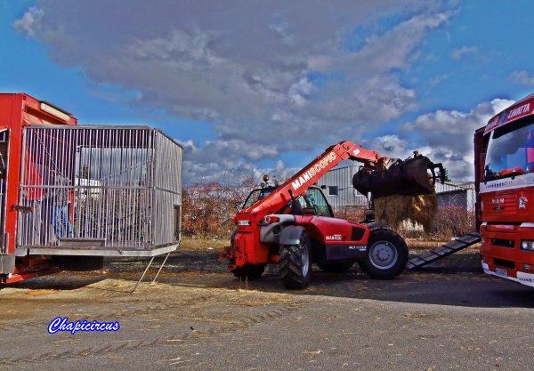 G4190 - CIRQUE CLAUDIO ZAVATTA en quartiers d'hiver.