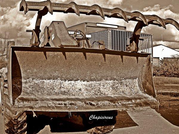 G4191 - CIRQUE CLAUDIO ZAVATTA en quartiers d'hiver.