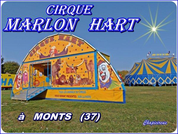 G4271 - CIRQUE MARLON HART.