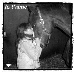 « L'air du paradis est celui qui souffle entre les oreilles d'un cheval. »..♥