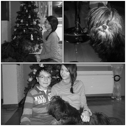 Noël 2012.