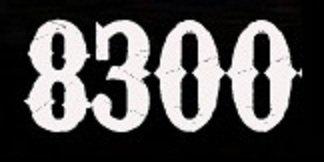 Fanabriques 2011, le chiffre du jour : objectif dépassé largement avec 8300 visiteurs !!!