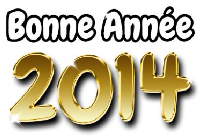 L'équipe des Festi'briques vous souhaite une bonne et heureuse année 2014