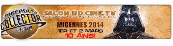1ière exposition pour les Festi'briques: Migennes Collector les 1 et 2 mars 2014