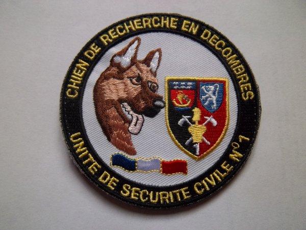 CHIEN DE RECHERCHE EN DECOMBRES UNITE DE SECURITE CIVILE N°1 NOGENT LE RETROU  EURE ET LOIR 28