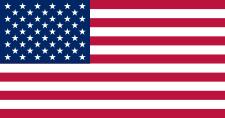 ECUSSONS POMPIERS AMERICAINS