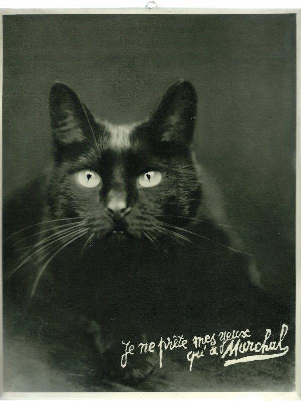 PUBLICITE POUR L EQUIPEMENTIER MARCHAL VERS 1940