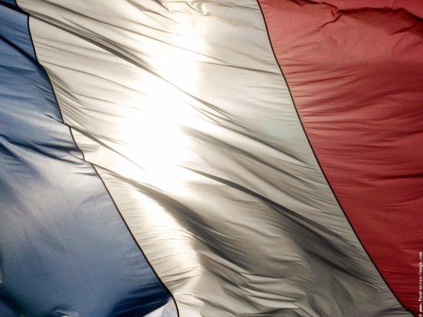 TOUJOURS SOUS LE SIGNE DES RESTRICTIONS BUDGETAIRES,L ARMEE FRANCAISE NOUS A OFFERT ENCORE UN BEAU DEFILé POUR LE 14 JUILLET 2014