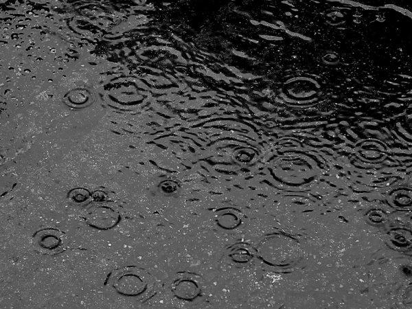 AUJOURD HUI 15 AOUT,13° AU THERMOMETRE ET PLUIE, PUIS PLUIE,puis pluie,etc etc...