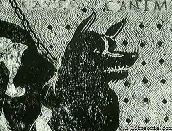 L'histoire du chien en compagnie de l'homme depuis le début de sa domestication.