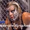Wwe-Photographies