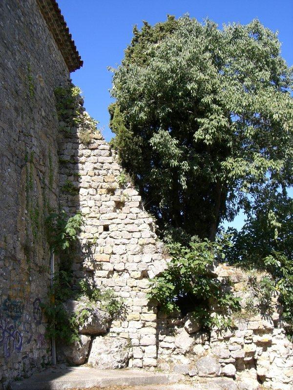 Montauroux ou quand la nature s'installe au village