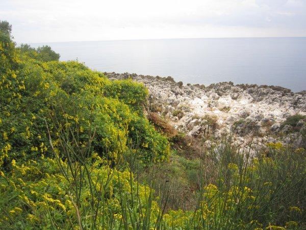 Tour du Cap Martin