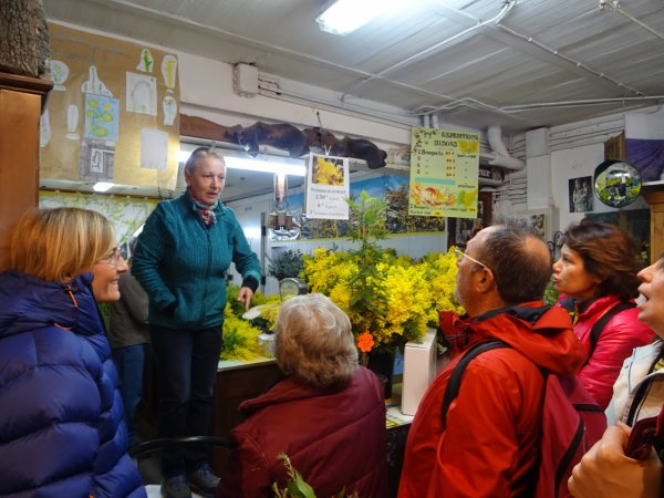La famille Vial, mimosistes à Tanneron