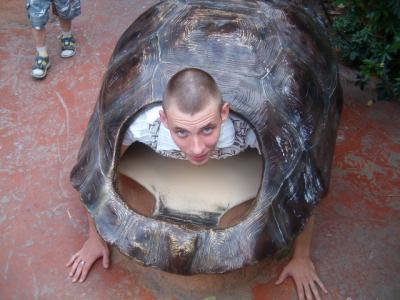 david en tortue